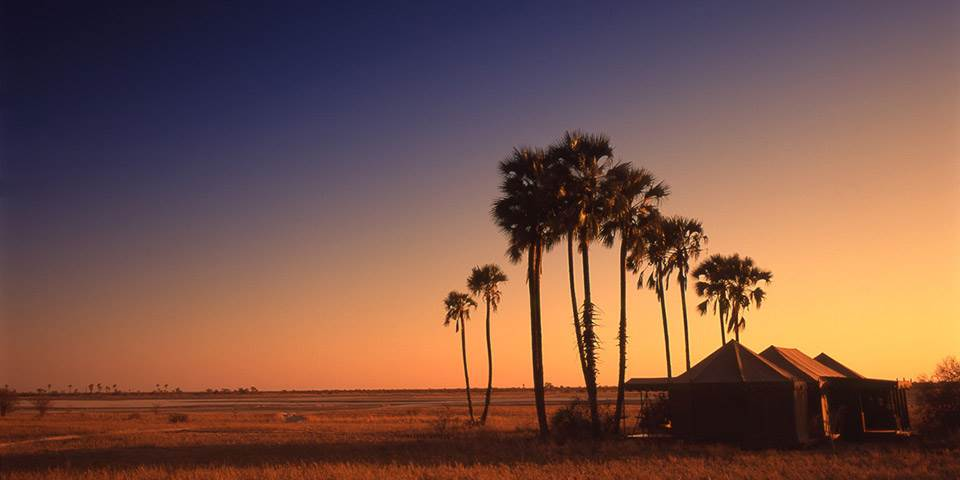 Sunset at Jacks Camp in Botswana