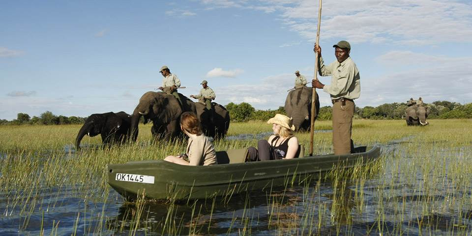 Canoe safari with elephants in the Okavango Delta