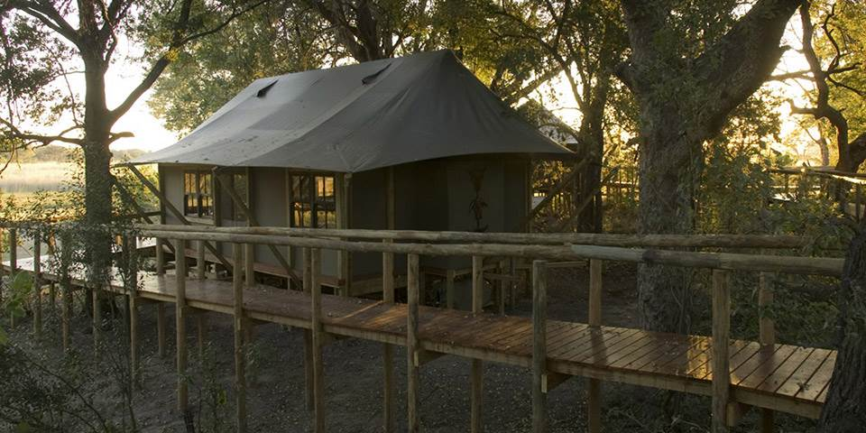 Luxury tented safari accommodation at Chitabe Camp