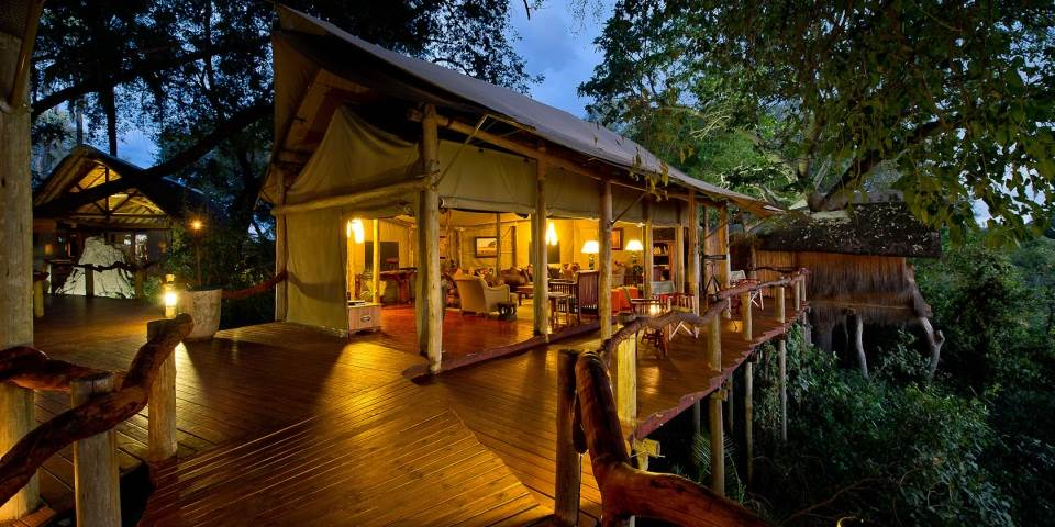 Tree top room at luxury Tubu Tree camp in Botswana
