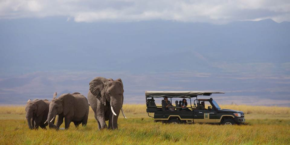 Amboseli National Park Kenya  city images : National Park Kenya Facts Tagged Keywords Camp Amboseli National Park ...