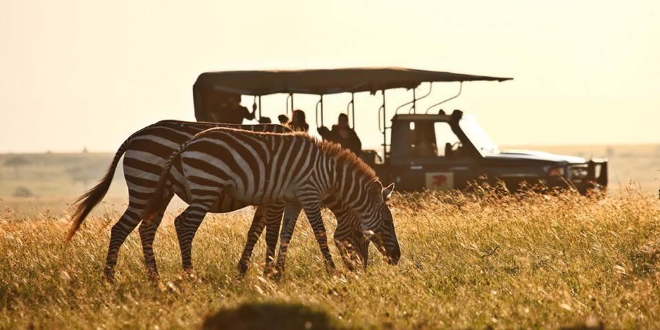 Kenya Safaris - Mirus Journeys